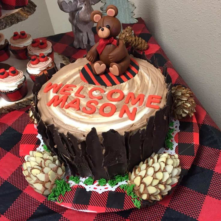 Lumberjack baby shower cake made by Sandy Campbell-Sandy Lynn's Creations