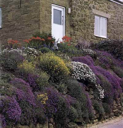 17 best images about landscaping ideas on pinterest for Rock wall garden designs