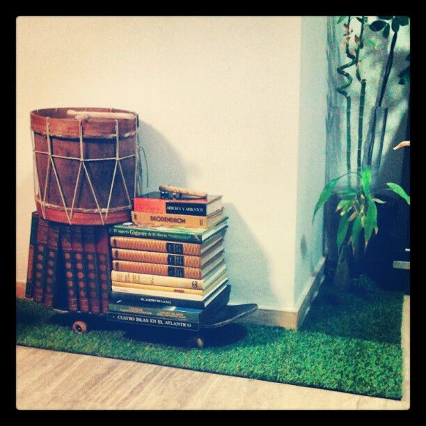 #Césped bajo #monopatín #estante y plantas / #grass under #skateboard #bookshelf and plants #slow