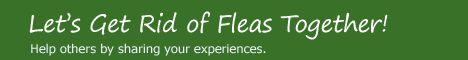 Diatomaceous Earth for Flea Control