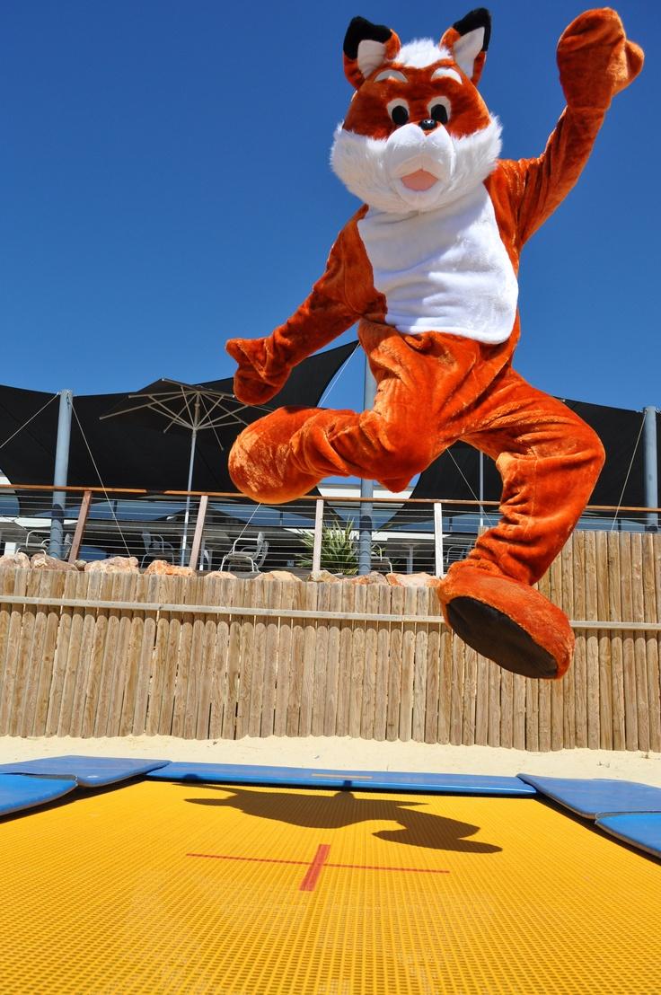 17 meilleures id es propos de ressorts de trampoline sur - Ressort de trampoline ...