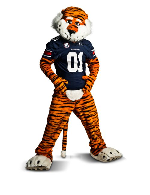 Photo of Aubie the Tiger, the winner of Capital One Mascot ...