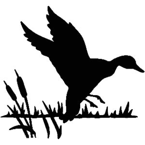 Duck Landing In Cattail Decal ST2010B #21 Window Sticker - Wildlife Decal