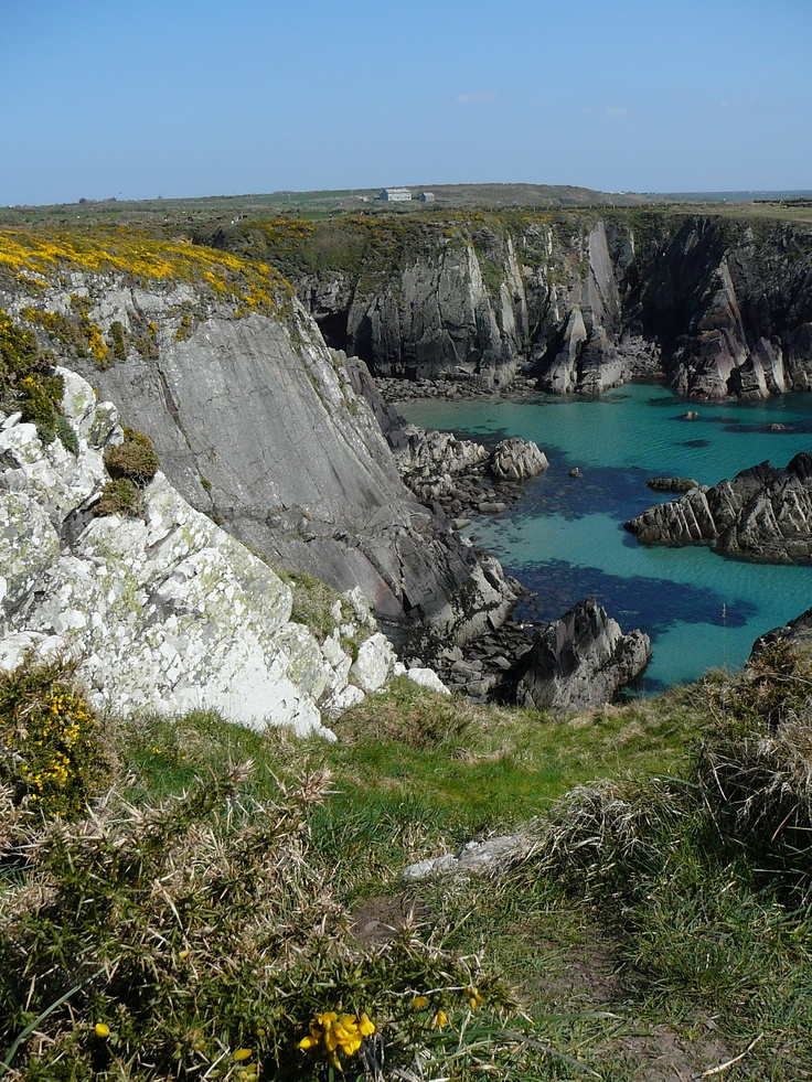 Pembrokeshire Coast Path Hope to live here one day,,,the land sings here