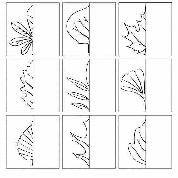 die besten 25 laubb ume bestimmen ideen auf pinterest sachkunde weidenbaum hochzeit und. Black Bedroom Furniture Sets. Home Design Ideas