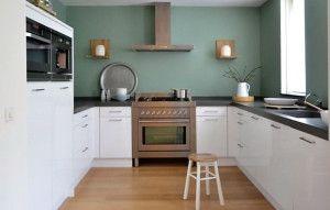 Dit is de keuken van Wendy. Zij combineerde Early Dew met haar witte keuken. Zo komen accessoires van natuurlijke materialen nog meer tot hun recht. Past deze kleur ook bij jouw keuken?