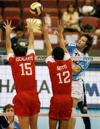 Famous Volleyball Players - Guillermo Garcia