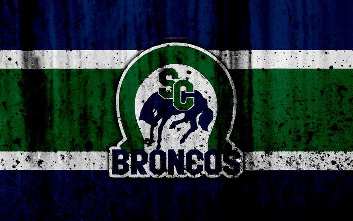 Download wallpapers Swift Current Broncos, 4k, grunge, WHL, hockey, art, Canada, logo, stone texture, Western Hockey League