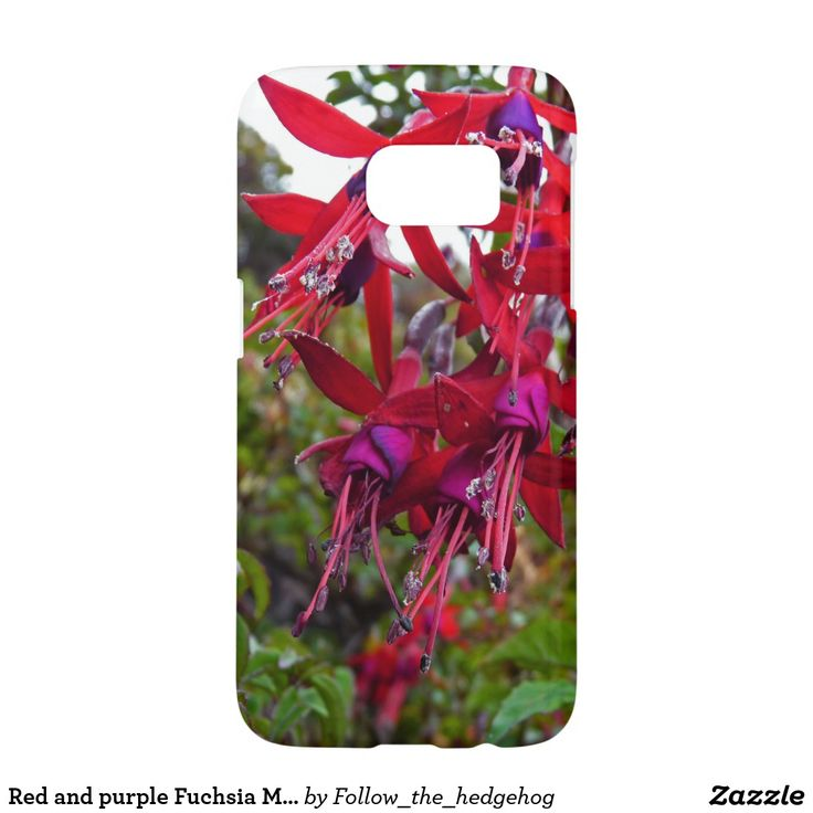 Red and purple Fuchsia Magellanica Samsung Galaxy S7 Case Red and purple Fuchsia Magellanica. Hummingbird Fuchsia or Hardy Fuchsia is a species of flowering plant in the Evening Primrose family, native to Patagonia. The picture was taken in Ushuaia, Argentina