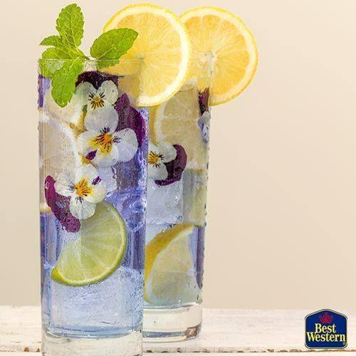 Comparateur de voyages http://www.hotels-live.com : Laissez-vous surprendre par les cocktails aux #fleurs de L'Alambic le #bar du Best Western Hôtel Élixir de #Grasse !  #BestWestern #BestRegards #BestHotel #hotel #luxe #elegance #voyage #design #chic #holidays #cocktail #flowers #flowerscocktail #drink #foodporn #summer #drink #lemon #violet #purple #pansy #couple #foodart #barman #creation #AlpesMaritimes #France Hotels-live.com via https://www.instagram.com/p/BEeBR0tnxIi/ #Flickr via…