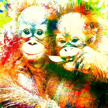 Orangutan Copyright © 2015 Stacey Chiew. All rights reserved.