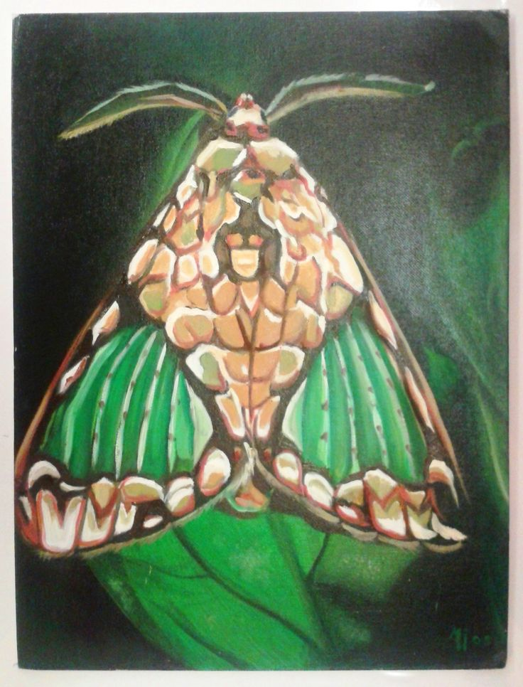"""Night Butterfly""  - Oil on canvas  FOR SALE"