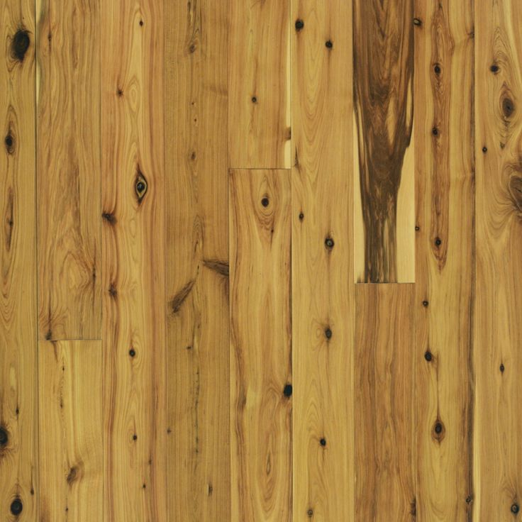 17 best images about austrailan cypress wideplank on pinterest types of hardwood floors - Australian cypress hardwood ...