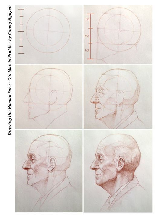Human face - Old man in profile step by step by Cuong Nguyen https://www.facebook.com/icuong?fref=photo