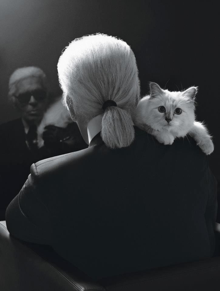 King Karl, by Karl Lagerfeld