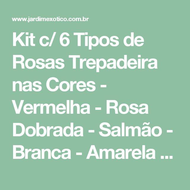 Kit c/ 6 Tipos de Rosas Trepadeira nas Cores - Vermelha - Rosa Dobrada - Salmão - Branca - Amarela e Vinho - Jardim Exótico - O maior portal de mudas do Brasil.