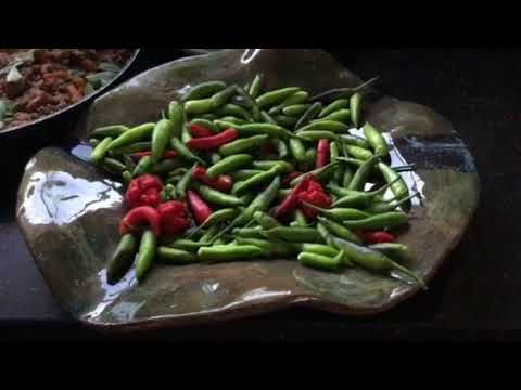 Homegrown chillies from my Sydney Summer garden - YouTube