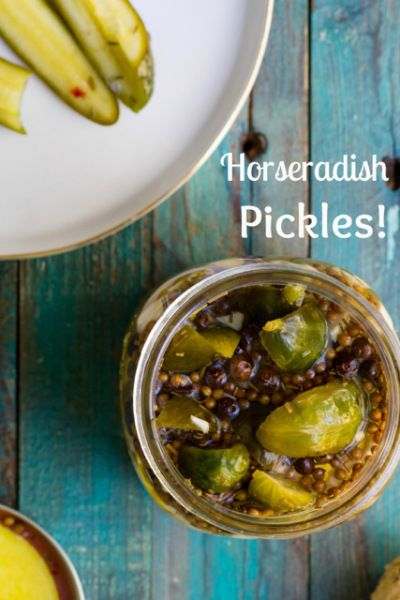 Homemade Horseradish Pickles! Easy, homemade, slightly spicy pickles. They will last in your fridge for weeks, but I bet you'll finish them before that!!
