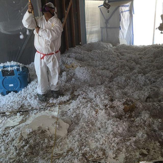 Asbestos Testing Cost