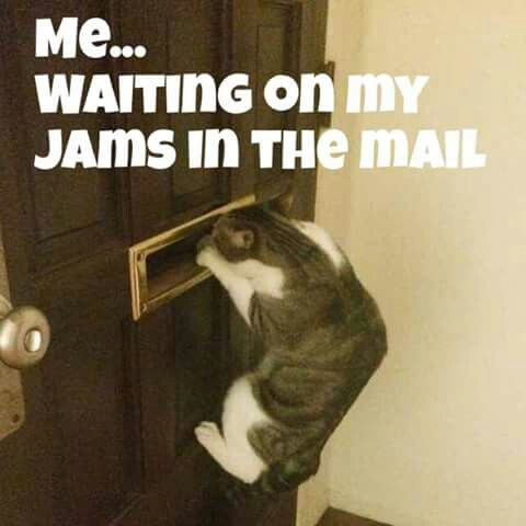 (Day 5 Post 1) Ladies start stalking those mailman/woman because your JamMail is on its way to you.. Yay.. I'm so excited.. I cat wait to see what they look like on y'all.. I STILL HAVE SAMPLES FOR (?) PEOPLE, IF YOU WANT TO TRY IT, JUST LET ME KNOW..