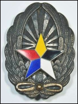 WW2 era Manchukuo Enamel Star Pilot Badge.