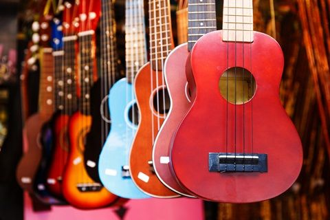 Some things you may need to be concerned about in regards to cheap ukuleles.