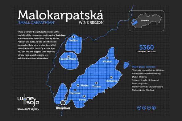 Malokarpatská wine region infoposter