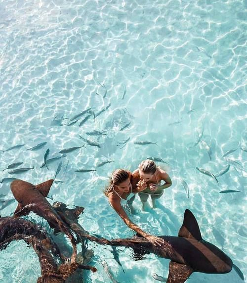 Summer Vibes :: Beach :: Friends :: Adventure :: Sun :: Salty Fun :: Blue Water :: Paradise :: Bikinis :: Boho Style :: Fashion + Outfits :: Free your Wild + see more Summertime Inspiration @lovestonedco