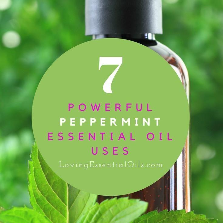 Use Wild Oil of Oregano to Treat