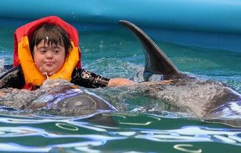 Trying Dolphin Therapy as Down Syndrome Tratment