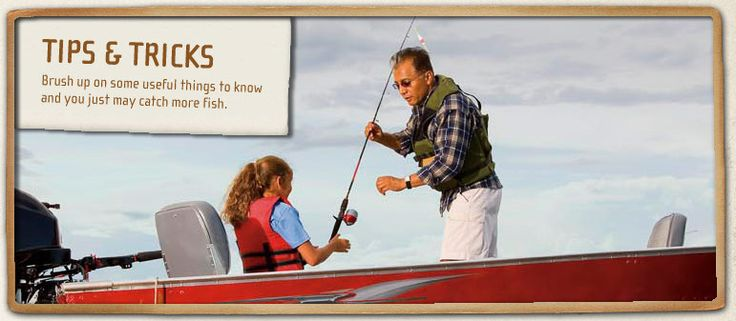 17 best images about fishing tips on pinterest trout for Freshwater fishing tips