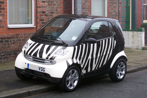 My Zebra striped Smart fortwo coupe