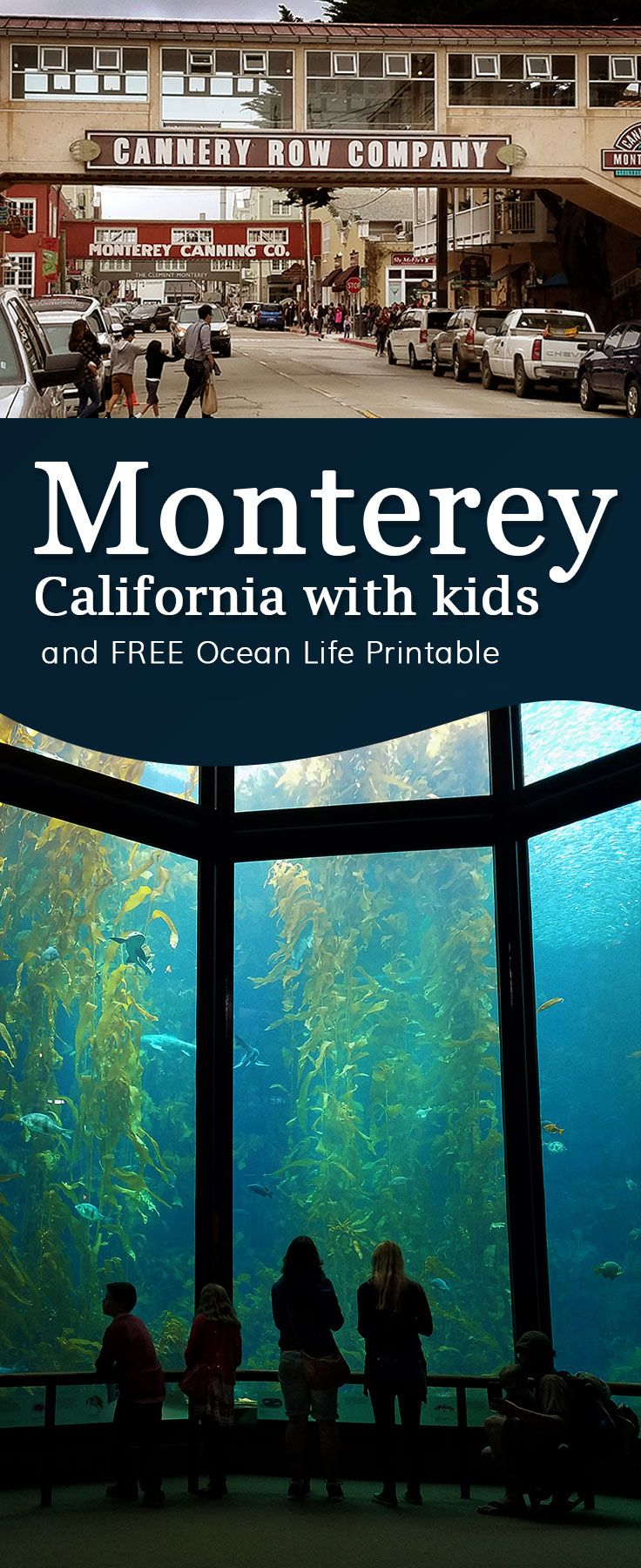 Monterey California - travel with kids. Free Jellyfish printable. Monterey Bay Aquarium and other places for families to check out!