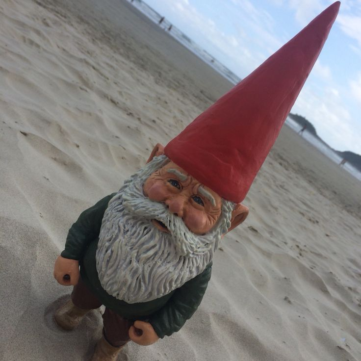 15 Best De Kabouter Images On Pinterest Gnomes David