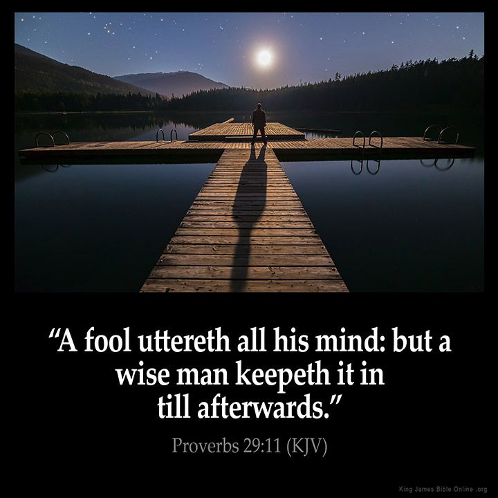 Proverbs 29:11 A fool uttereth all his mind: but a wise man keepeth it in till…