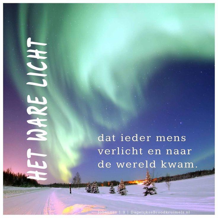 Het ware licht, dat ieder mens verlicht en naar de wereld kwam. Johannes 1:9 #Jezus, #Kerst, #Licht http://www.dagelijksebroodkruimels.nl/johannes-1-9-2/