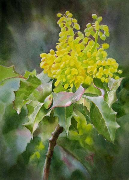 7626 best images about art flowers on pinterest for Oregon craft floral
