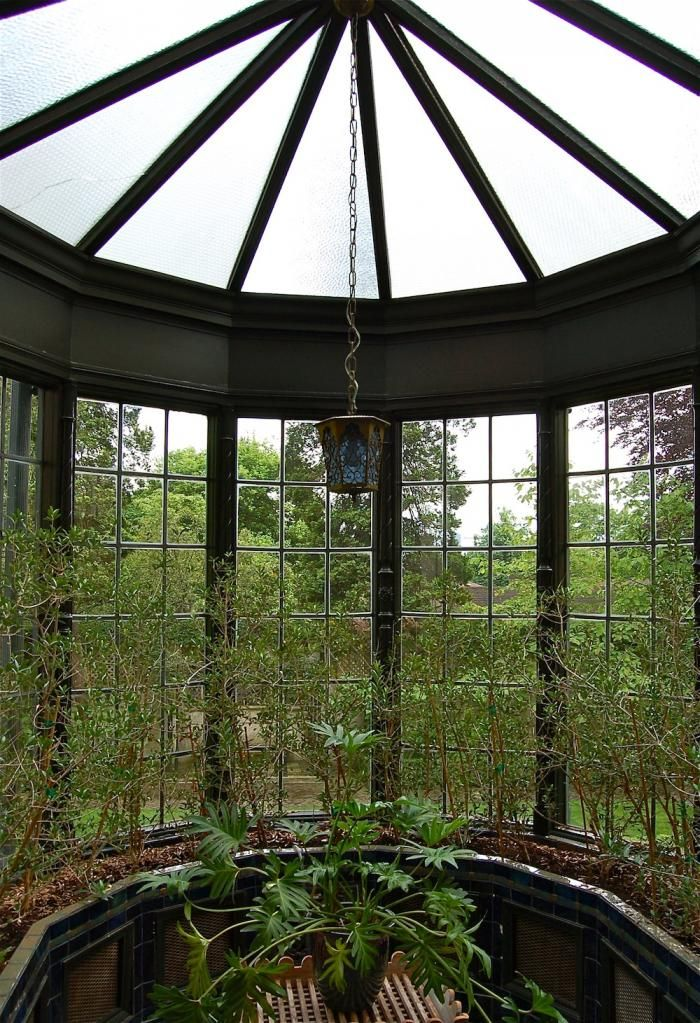 Unique Garden Sheds Seattle Inside An Orangerie Planted With Small Olive Trees Leaded Glass Tiffany Tiled Floor Treegarden Shedsgardening Intended Inspiration