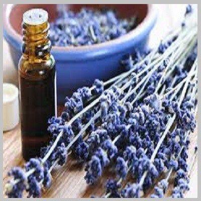 Dit is niet het eerste bericht op deze blog dat verschijnt over lavendelolie. Olie van dit kruid doet echt meer dan lekker ruiken.Lavendelolie werkt positiefop het centrale zenuwstelsel, en zorgt…