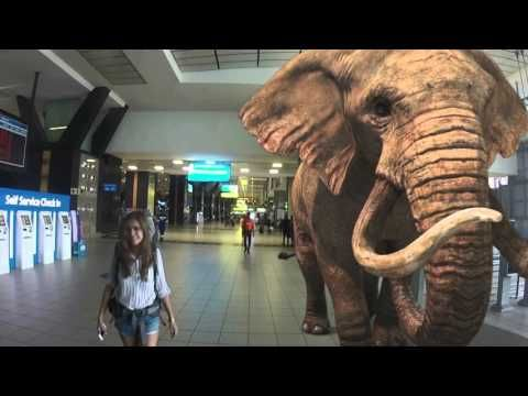 3rockAR Augmented Reality at OR Tambo filmed with TOMTOM - YouTube