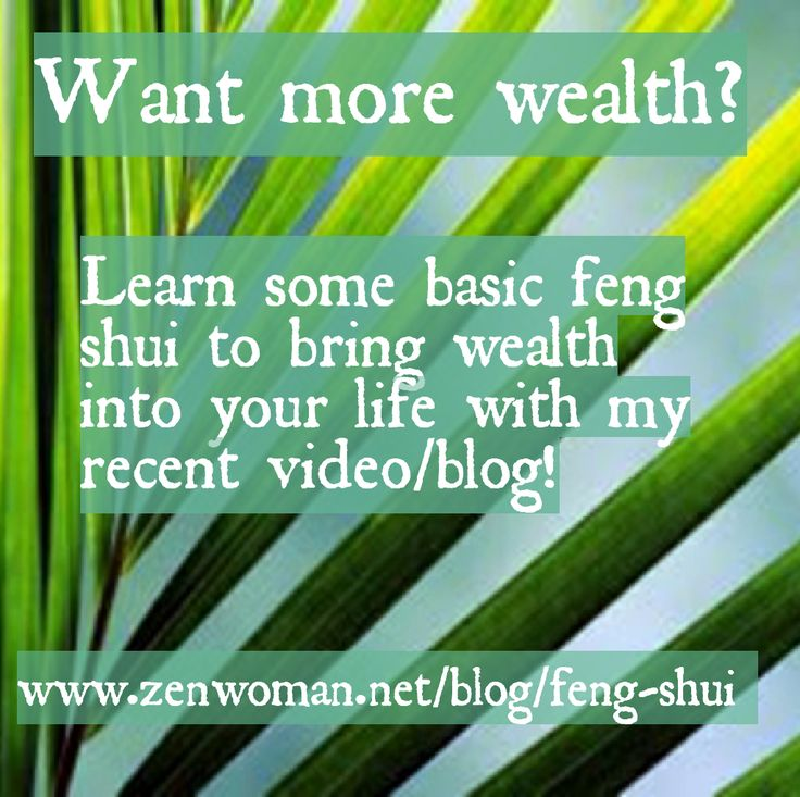 Read the blog and learn now to increase your wealth using some basic feng shui tips: www.zenwoman.net/blog/feng-shui