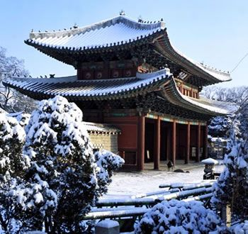 #Seoul #Korea #Asia - Changdeokgung Palace in winter. This is a place that you should visit in Seoul, Korea. Do you believe there is a secret garden that attracts people go there?