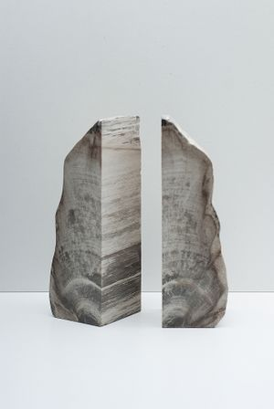 Petrified Wood Bookends • TypeO • Tictail