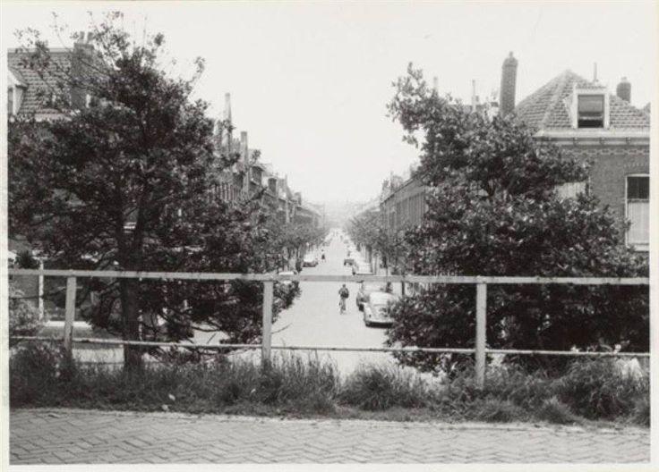 PKD 1964