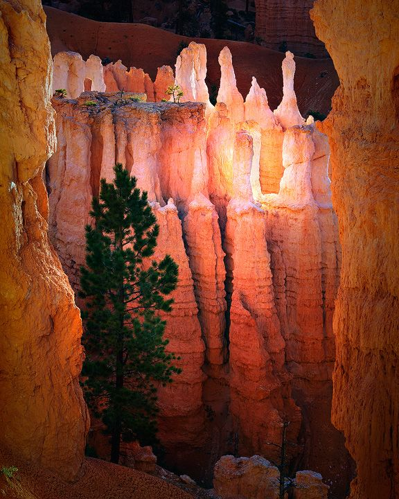 Hidden Hoodoos | A hoodoo (a tent rock, fairy chimney, and earth pyramid) tall, thin spire of rock that protrudes from the bottom of an arid drainage basin or badland.| form within sedimentary & volcanic rock formations. (Wikipedia)