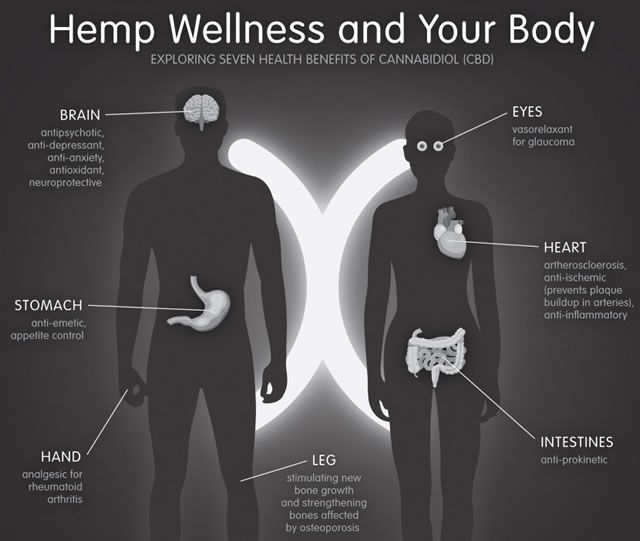 Hemp Wellness and Your Body These are some cool #Marijuana Pins but OMG check this out #MedicalMarijuana www.budhubinc.com https://www.facebook.com/BudHubInc (Like OurPage)