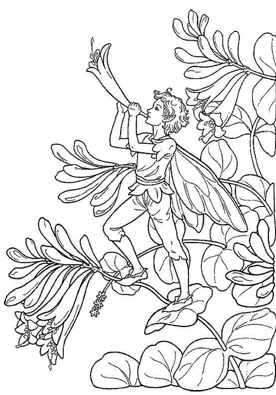Fantasy Fargelegging for barn. Tegninger for utskrift og fargelegging nº 23
