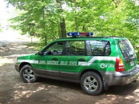 Lavori in casa sequestrata, denunciata Violazione scoperta da agenti Corpo forestale dello Stato