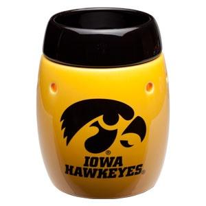 52 Best Iowa Hawkeye Bedroom Images On Pinterest Child