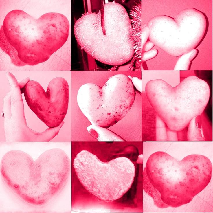 Harten van ...aardappelen :)    #geluk # liefde #hart